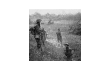 GL Kiwi Soldiers Image