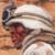 Yosser's Profile